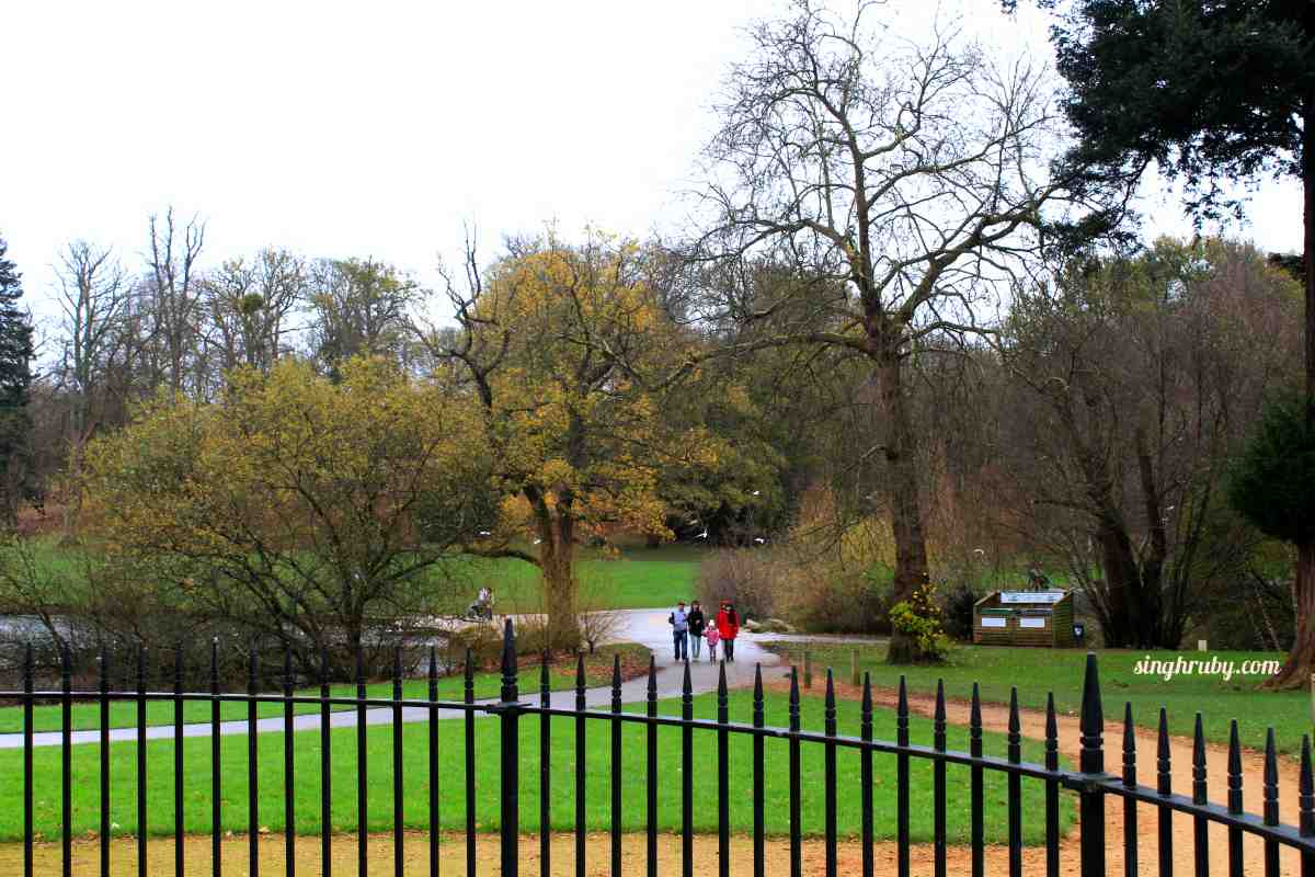 Valley of Gardens at Windsor Great Park