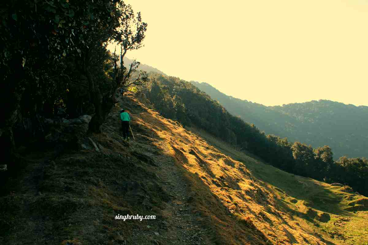 Trekking Towards Nagtibba